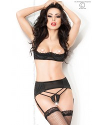 Four Piece Set Garterbelt, Bra, Crotchless Panties & Stockings